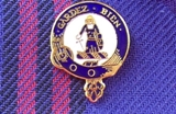 Crest Lapel Pin - Small