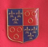 Shield Pin